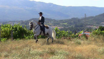 Lições Equitação