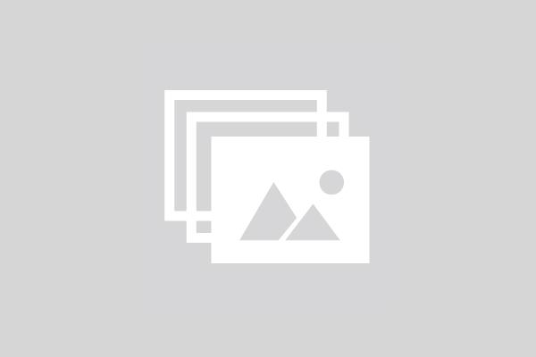 Jogos Equestres de Ponte de Lima arrancam a 15 de Agosto
